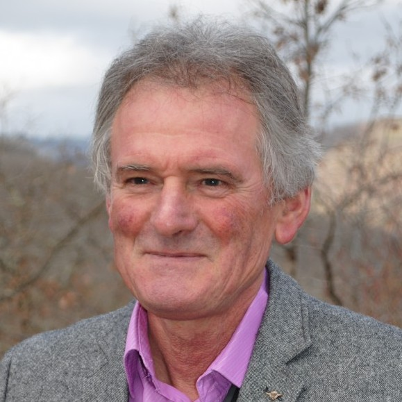 Jean-Michel DEMONEIN